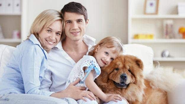 Wills & Trusts dog-young-family Direct Wills Wantage